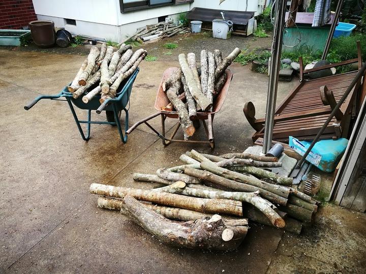 0510ホダ木作り1