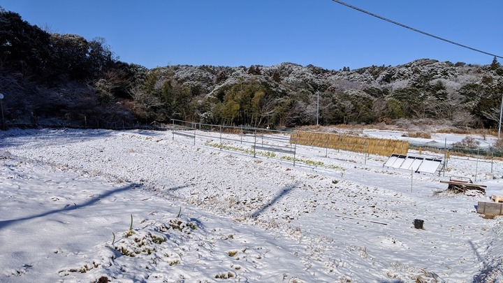 0201雪景色1