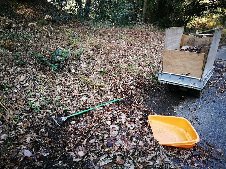 1224堆肥用落ち葉1