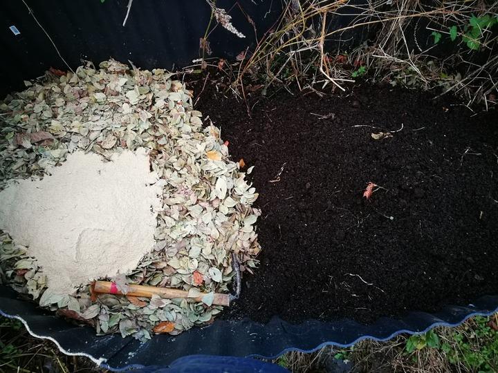 1223堆肥置き場2