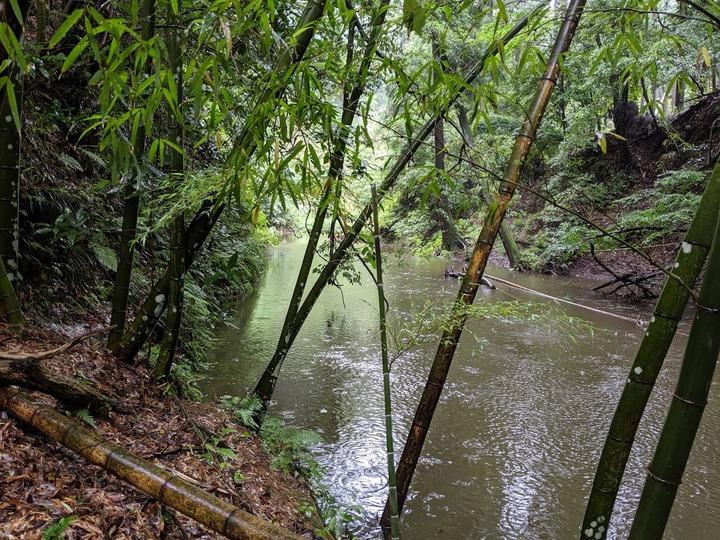 0707川は満水
