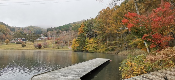 1031女神湖の紅葉