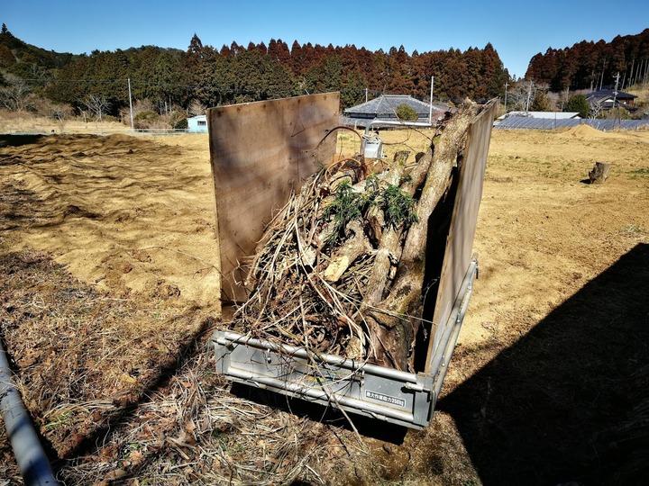 0222柴刈り1
