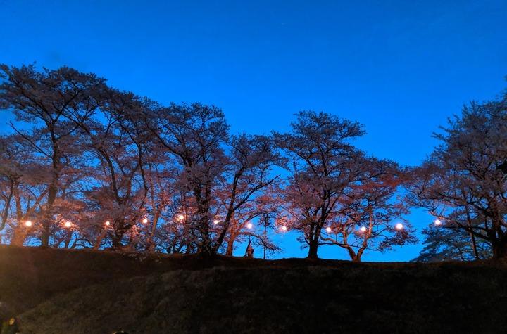 0418滝桜周辺1