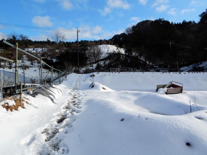 0208前の大雪