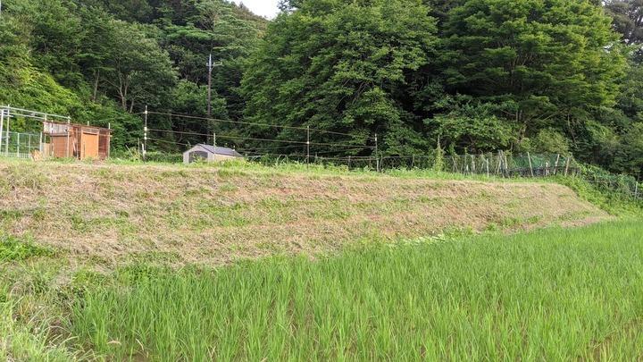 0617草刈機デモ2