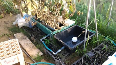0725給水装置.jpg