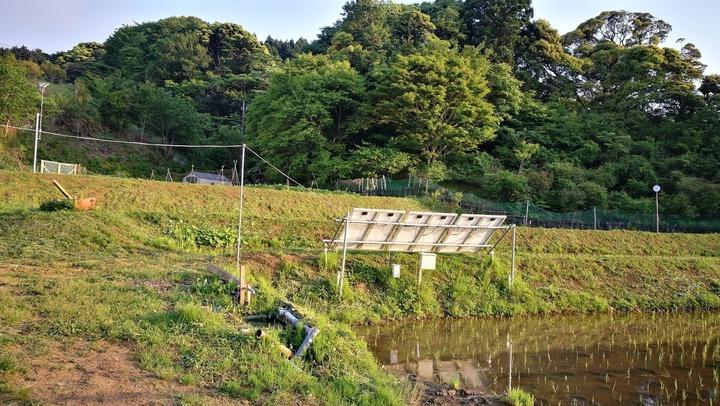 0520田んぼ周り草刈り完了0