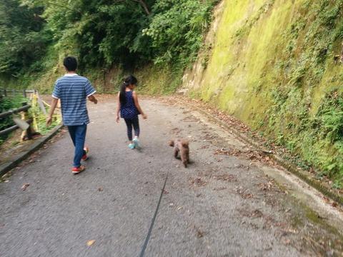 00811 山歩き.jpg