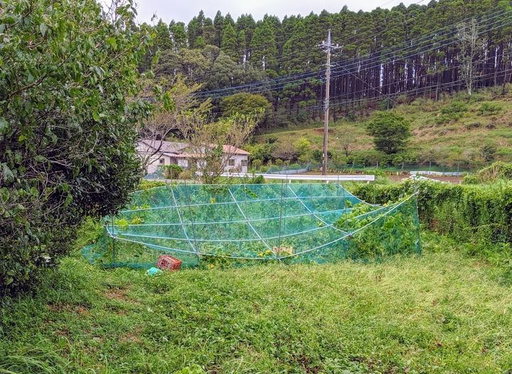 0223台風被害9月