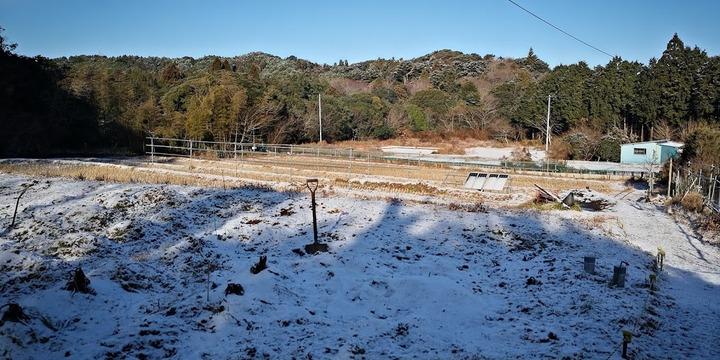 0106雪の農場1