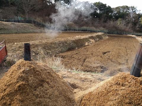 0128土手の草刈り.jpg
