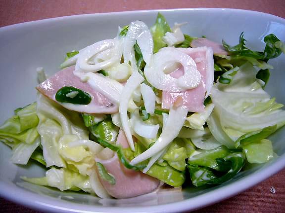 コールスローサラダ→手作り簡単ドレッシングですが美味しいですよ・・これはオット用の写真です
