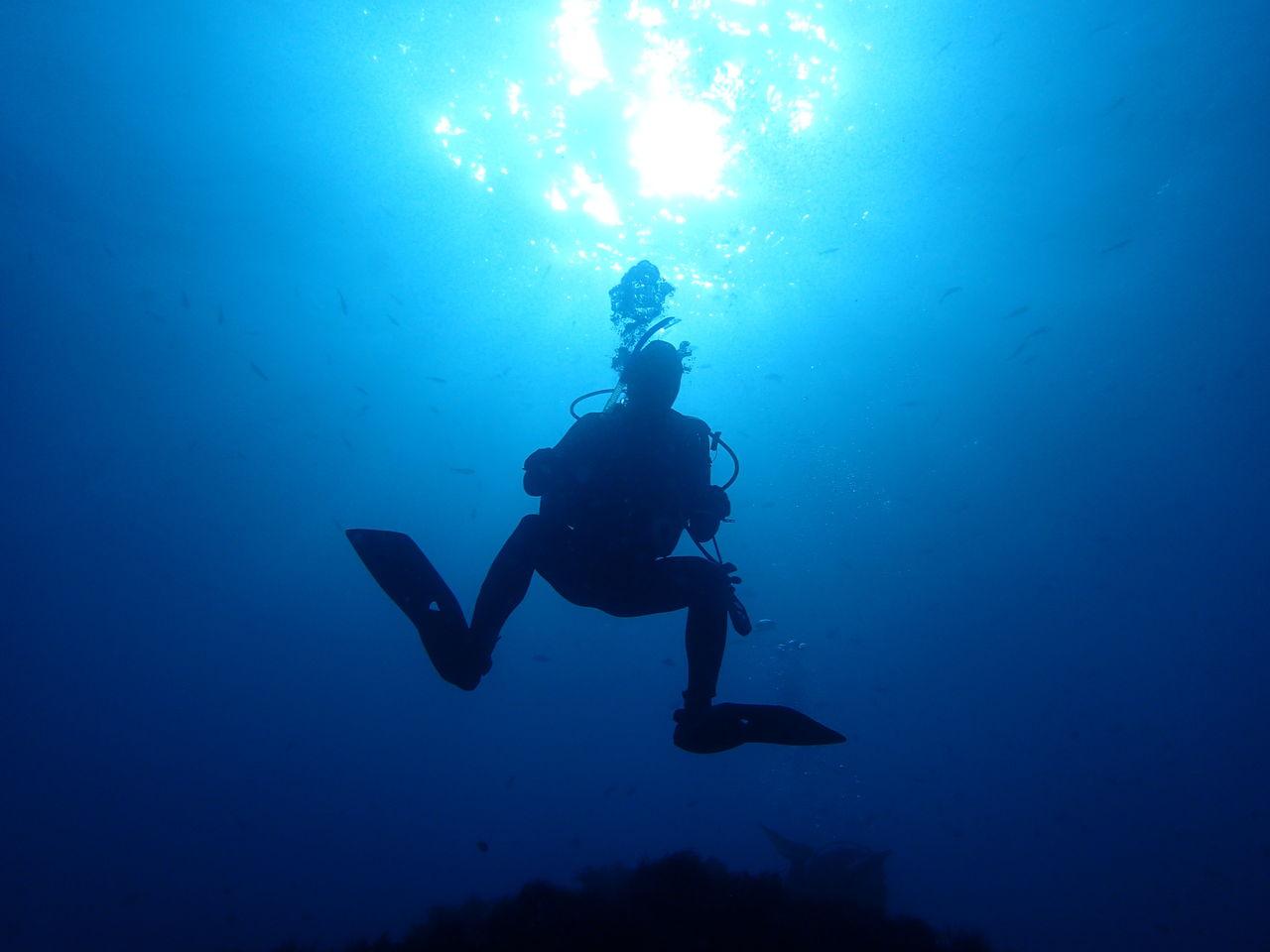 海洋調査探検部探検記2014年12月秋合宿                kaiyo_soka