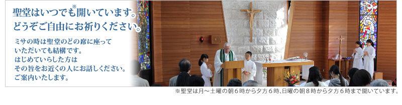 聖堂は月〜土曜の朝6時から夕方6時、日曜の朝8時から夕方6時まで開いています。