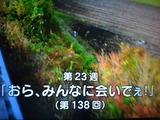 b9cd8543.jpg
