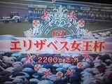 bfa7cea5.jpg