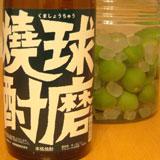 球磨焼酎で漬ける梅酒完成