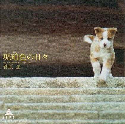 1981_09_琥珀色の日々_菅原進