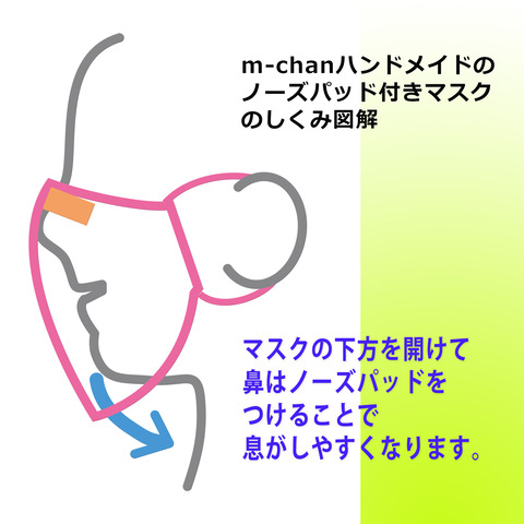 NPmask構造001
