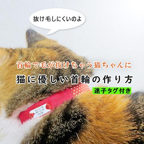 猫首輪タイトル画像002