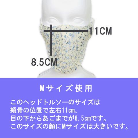 NPmaskブログLMSXSサイズ説明用001