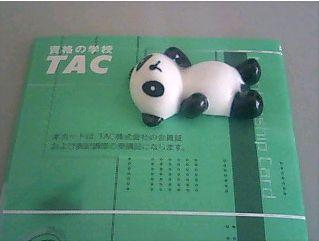TAC_tax申込