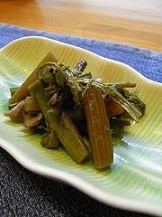 山菜のうま煮、アオリイカのエンペラ、鷹の爪