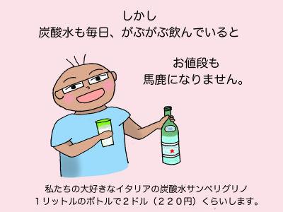 しかし炭酸水も毎日、がぶがぶ飲んでいるとお値段も馬鹿になりません。私たちの大好きなイタリアの炭酸水サンペリグリノ 1リットルのボトルで2ドル(220円)くらいします。
