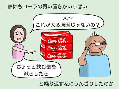 家にもコーラの買い置きがいっぱい 「え〜 これが太る原因じゃないの?」 「ちょっと飲む量を減らしたら」と繰り返す私にうんざりしたのか