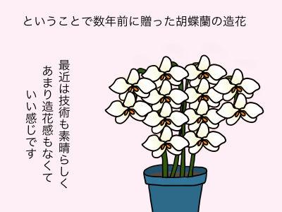 ということで数年前に贈った胡蝶蘭の造花 最近は技術も素晴らしく、あまり造花感もなくていい感じです