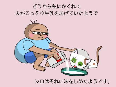 どうやら私にかくれて夫がこっそり牛乳をあげていたようで、シロはそれに味をしめたようです。