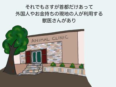 それでもさすが首都だけあって外国人やお金持ちの現地の人が利用する獣医さんがあり