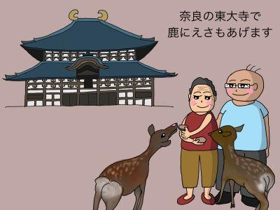 奈良の東大寺で鹿にえさもあげます