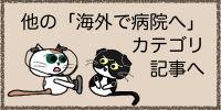 Cat-hostpital-F