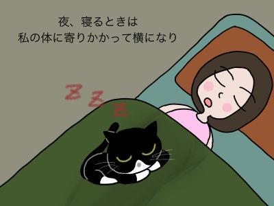夜、寝るときは私の体に寄りかかって横になり