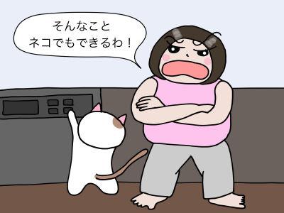 そんなこと、ネコでもできるわ!