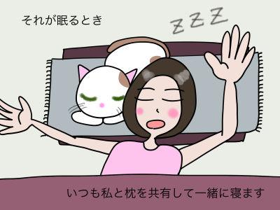 それが眠るとき いつも私と枕を共有して一緒に寝ます