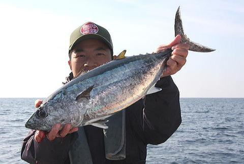 a-yokowa131124