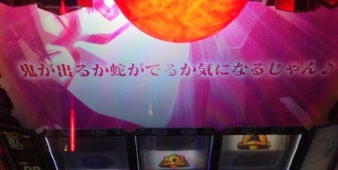 IMG_8655