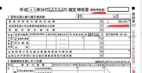kakutei_shinkoku_2019_akaji_2