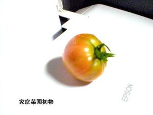 CIMG2388