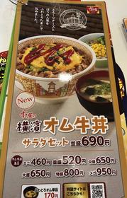 俺「すき家に来たぜ!」メニュー「スタミナ祭り!ニンニクマックス!オム牛丼!俺「うまそー!決めた!」