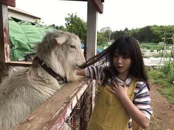 【乃木坂46】与田ちゃんはみんなから「食べれそう」と思われちゃうんだねwwwww