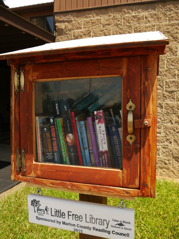 20160717_Little Free Library_Fairmot, WV (6)