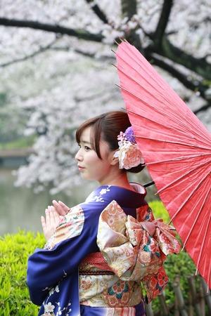 鎌倉振袖ロケーション写真桜 (2)