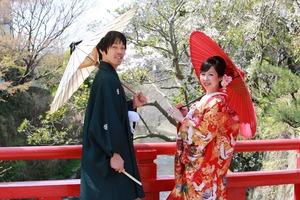 鎌倉和装前撮り 琴弾橋 桜 さくらロケーション