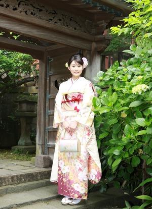 鎌倉成人式振袖アジサイロケーション撮影