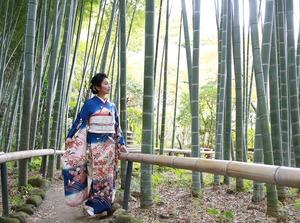 成人式前撮り ロケーションフォト 鎌倉庭園