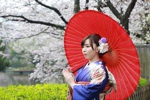 鎌倉桜振袖ロケーション写真